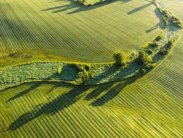 Stunning surface textures of velvet green farm field, aerial view.
